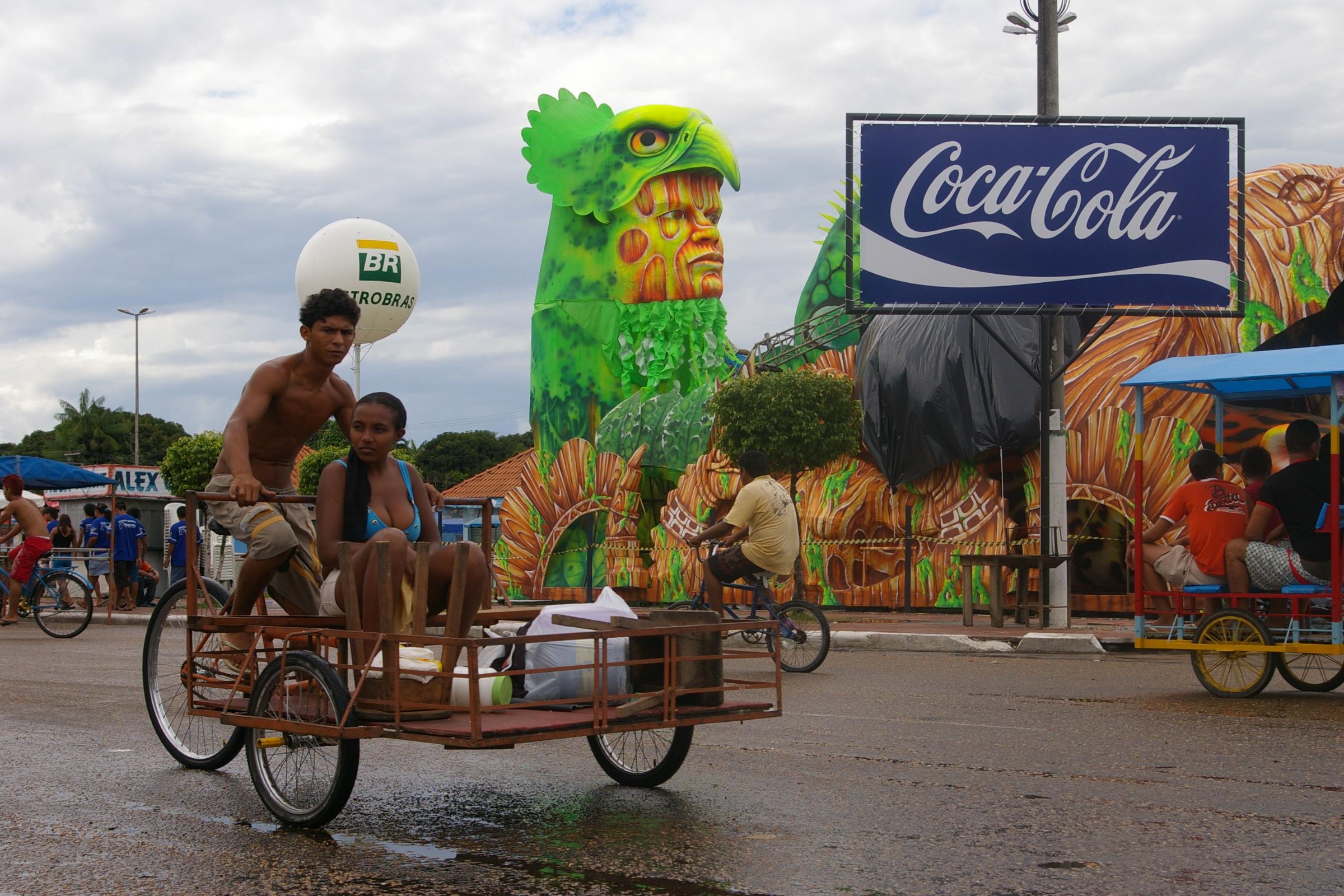 Amazonia (12)