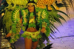 Amazonia (13)
