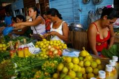 Amazonia (4)