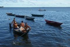 Amazonia (5)
